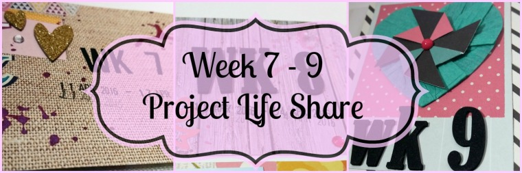 Week 7 - 9 Project Life Share